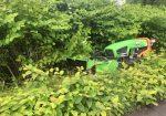 Entretien des abords de l'Arve entre Bonneville et Sallanches - Entretien des espaces verts le long de l'Arve entre Cluses et Sallanches
