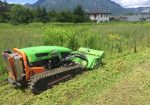 Débroussaillage d'un terrain à Marnaz - Débroussaillage d'un terrain avant l'implantation et terrassement d'une construction à Marnaz en Haute-Savoie.